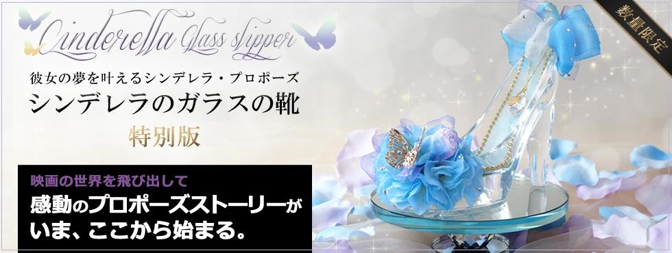 彼女の夢追を叶えるシンデレラ・プロポーズ シンデレラのガラスの靴 特別版