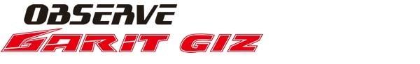 スタッドレスタイヤ/トーヨーGARIT GIZ