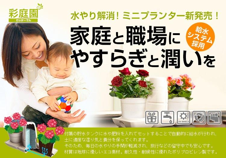 「彩庭園 ミニプランター」。水やり解消!ミニプランター新発売!。家庭と職場にやすらぎと潤いを。