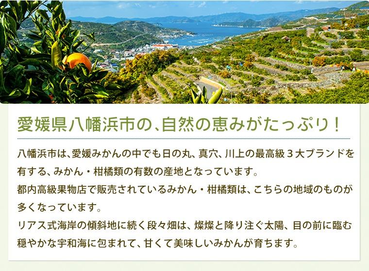 愛媛県八幡浜市の自然の恵みがたっぷり!