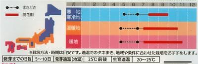 朝顔 暁の混合(1ml) 〜花のタネ〜