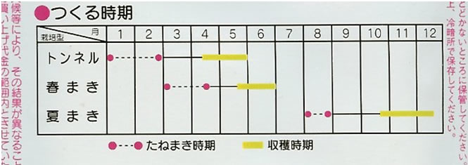 ミニにんじん種 ベビーキャロット(5ml)〜サカタのタネ〜