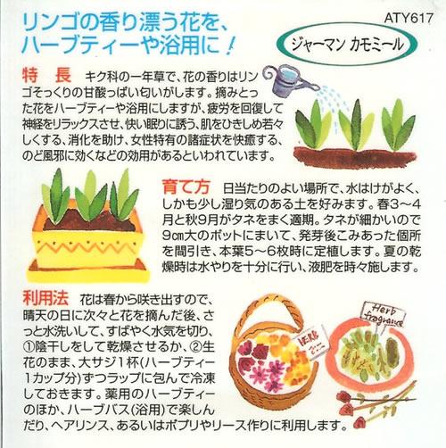 ハーブ種 ジャーマン カモミール(0.5ml)