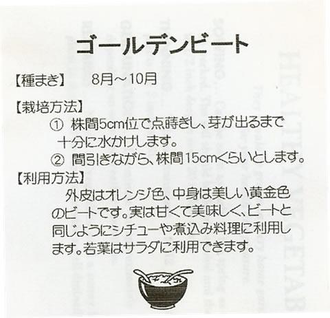 世界の野菜種 ゴールデンビート(2ml)