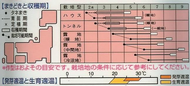 エダマメ種 エダマメ 富貴(白毛種)(70ml)