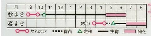 金魚草 F1カリヨンミックス(0.05ml)