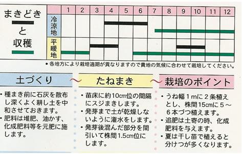 九条太ねぎ(15ml)〜ねぎ・種〜