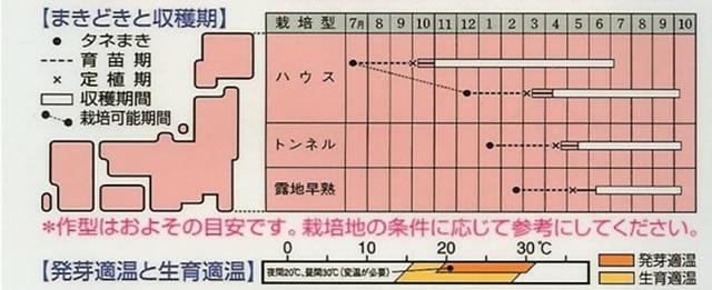 ナス種 くろわし(0.3ml)〜タキイ交配〜