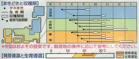 かぶ 種 京千舞 (2.5ml)
