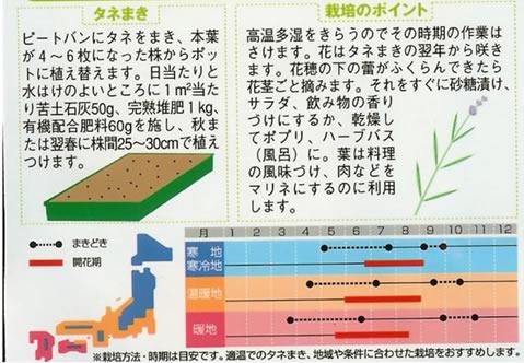 ハーブ種 ラベンダー(0.1ml)