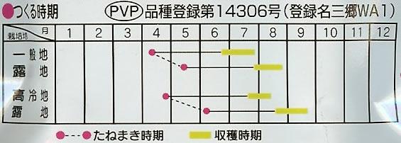 エダマメ種 エダマメ おつな姫(25ml)