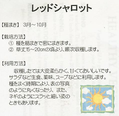 世界の野菜種 レッドシャロット(5ml)