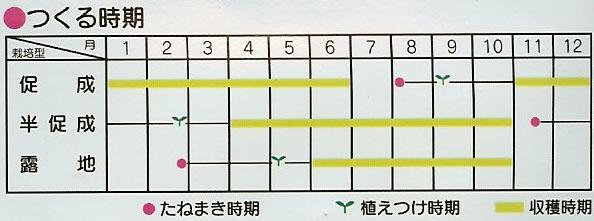ししとう種 翠臣(0.8ml)