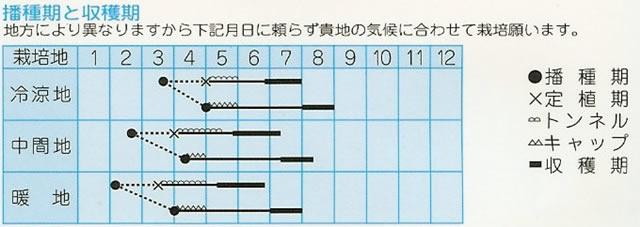 メロン種 タイガーメロン(1.5ml)〜高農品種〜