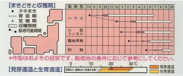ナス種 筑 陽(0.3ml)〜タキイ交配〜
