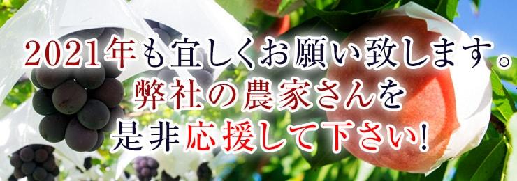山梨の桃 美味しい桃 通販