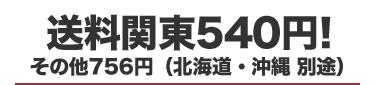 送料関東540円 その他756円(北海道・沖縄 別途):ビジネスバッグ ショルダーバッグ トートバッグ リュック スーツケース カバンの通販DETAILS