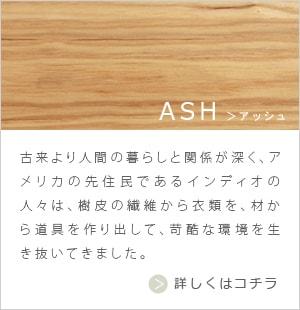 ash01.jpg