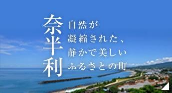 奈半利町役場のホームページ