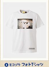 アモコゾウ フォトTシャツ