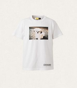 モコゾウ フォトTシャツ