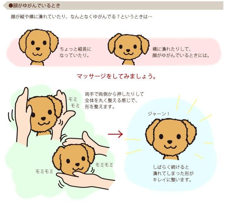 ●顔がゆがんでいるとき マッサージをしてみましょう。両手で両側から押したりして全体を丸く整える感じで、形を整えます。しばらく続けると潰れてしまった形がキレイに整います。