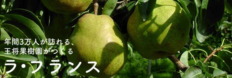 王将果樹園[果物]