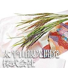 太平山観光開発株式会社 ドライ稲 稲かざり