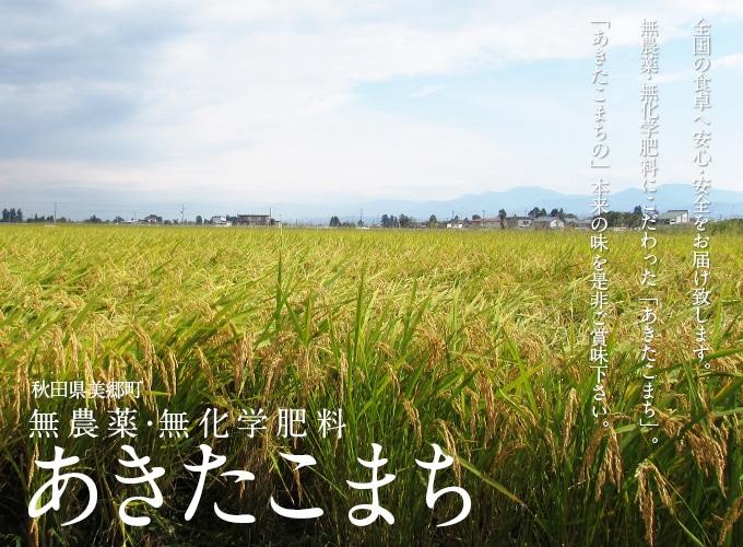 秋田県美郷町 無農薬・無化学肥料「あきたこまち」全国の食卓へ安心・安全をお届け致します。無農薬・無化学肥料にこだわった「あきたこまち」。「あきたこまちの」本来の味を是非ご賞味下さい。