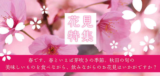 秋田ずらり 花見特集