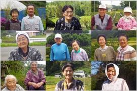 山菜採り名人 天然山菜生産量日本一