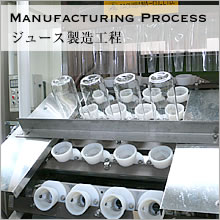 Manufacturing Process ジュース製造工程