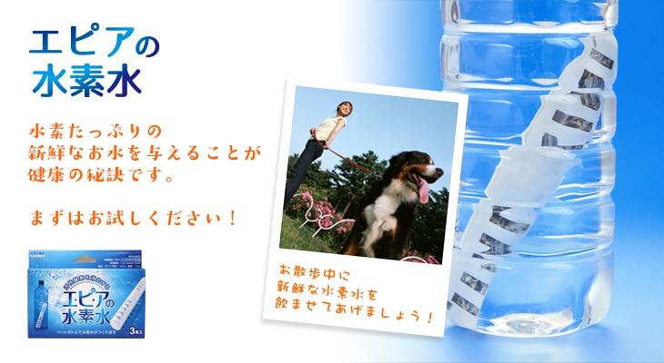 「エピアの水素水」ペットの散歩にも!携帯に便利♪