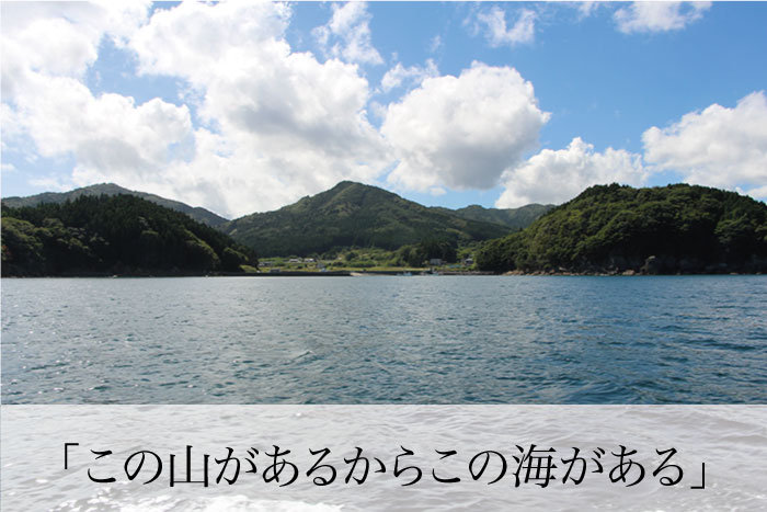 この山があるから豊かな海が育まれます。
