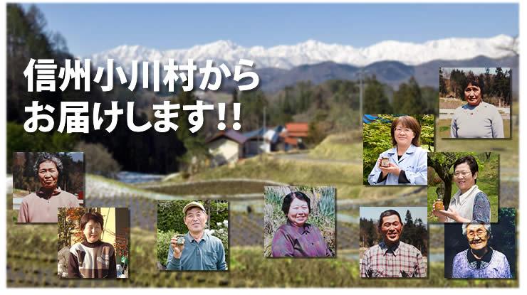 信州小川村の おばあちゃん手づくりの味。 いろんなお惣菜が楽しめます