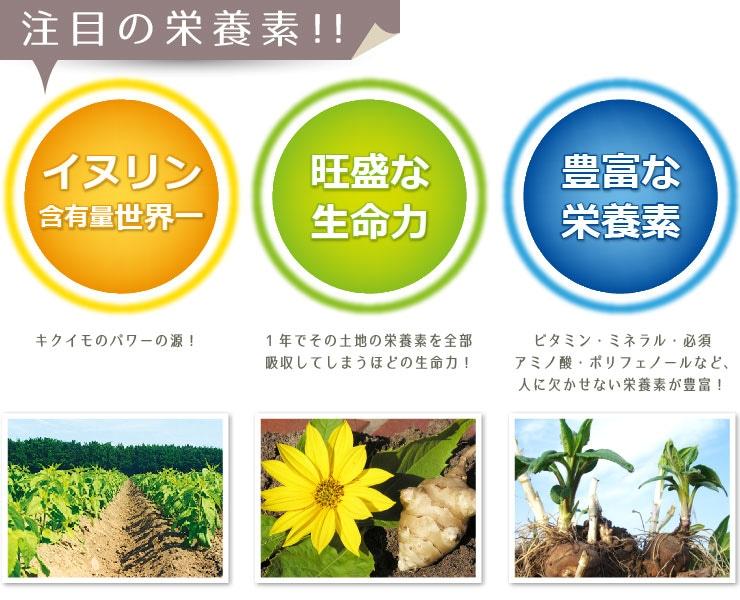 菊芋(きくいも)は注目の栄養素
