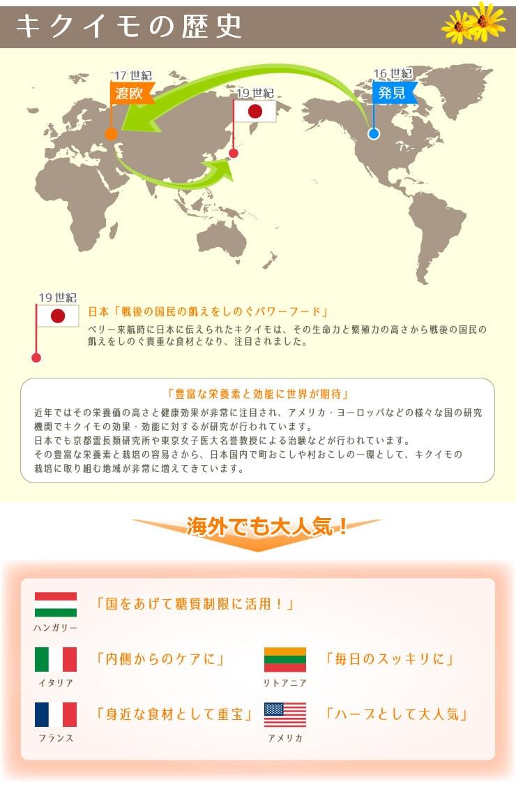 菊芋(きくいも)の歴史