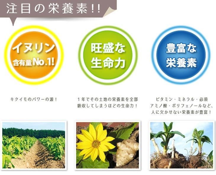 """スーパーフード菊芋とは"""""""