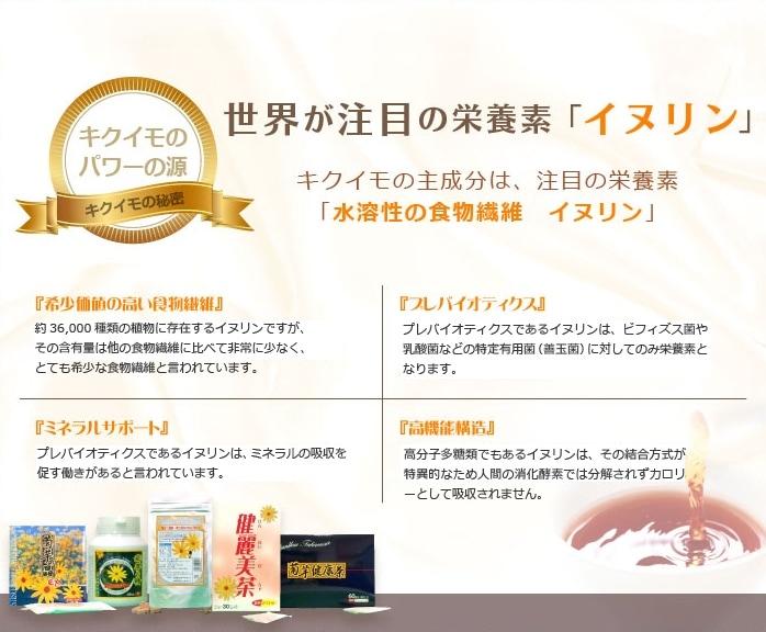 菊芋(きくいも)は世界が注目の栄養素『イヌリン』