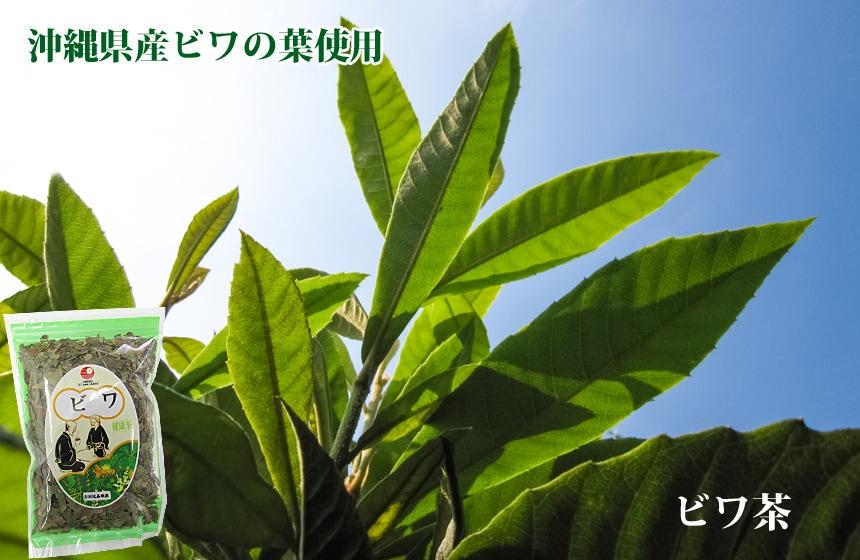沖縄県産ビワの葉使用 ビワ茶