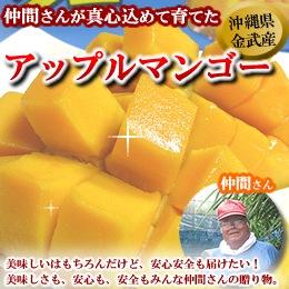 おいしい〜沖縄のマンゴー^^/