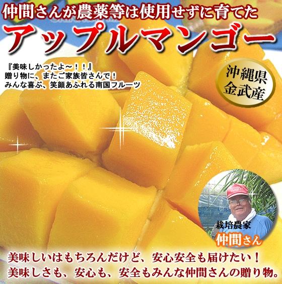 美味しい!沖縄県産アップルマンゴー