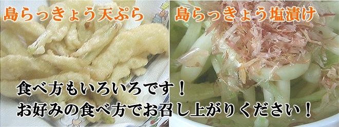 島らっきょう天ぷら、島らっきょう塩漬け