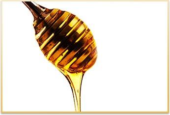 金沢産蜂蜜