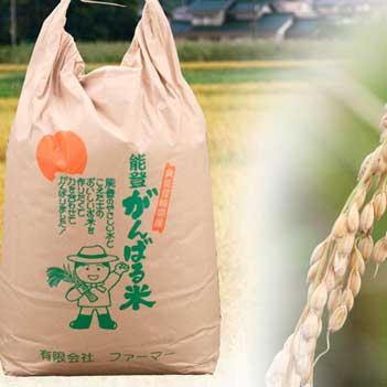 がんばる米10kg