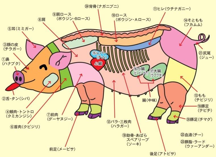 やんばる島豚あぐーの部位説明図