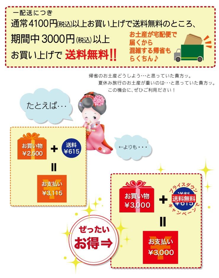 期間限定☆送料無料プライスダウンキャンペーン!通常4100円以上のところ、期間中3000円以上お買い上げで送料無料