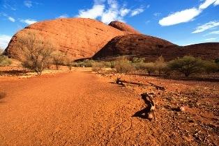 オーストラリアの砂漠地帯