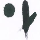 白麻紙2号(生)