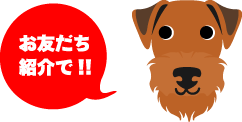 お友だち紹介で!!